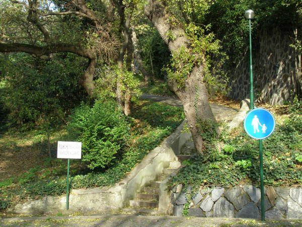 robert-college-walkway.jpg