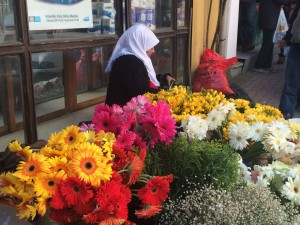 A daily scene on the street in Arnavutköy, a gypsy flower merchant. Ann Marie's Istanbul