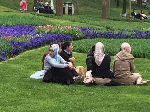 Turkish lovelies bask among the tulip displays, Istanbul: Ann Marie's Istanbul